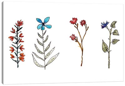 Botanical Vibes II Canvas Art Print