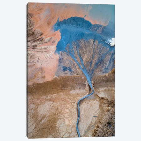 The Blue Tree Canvas Print #PLS3} by Marc Pelissier Canvas Wall Art