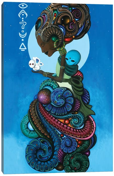 Omarosa Canvas Art Print