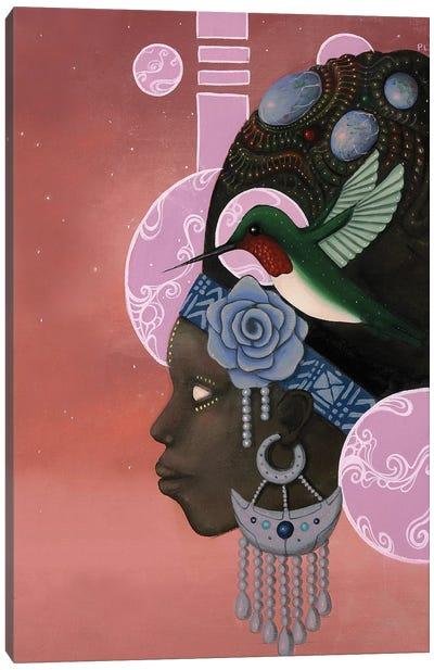 Theory of the Hummingbird Canvas Art Print