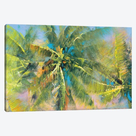 Palm Collage Canvas Print #PMA3} by Paul Mathenia Canvas Wall Art