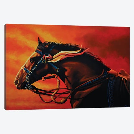 Warhorse Joey Canvas Print #PME158} by Paul Meijering Canvas Art Print