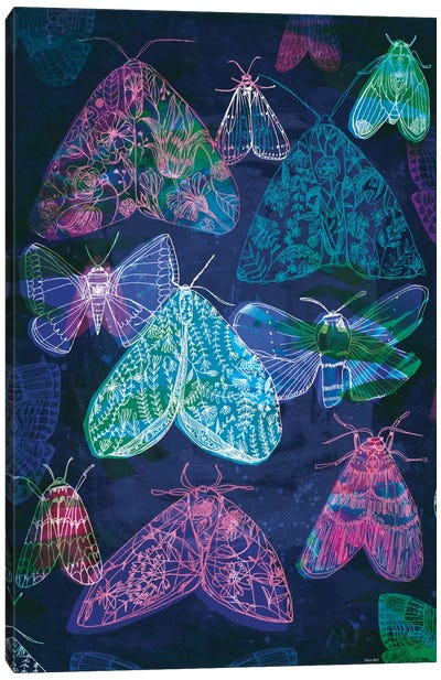 Floral Night Moths II Canvas Art Print