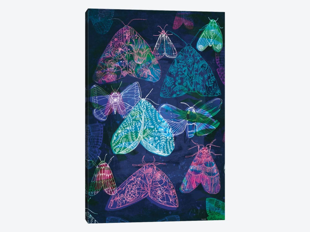 Floral Night Moths II by Sweet William 1-piece Canvas Artwork