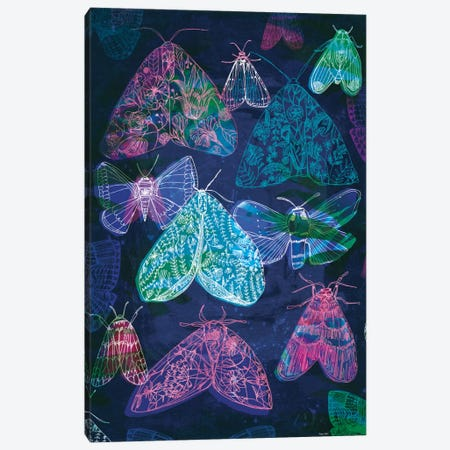 Floral Night Moths II Canvas Print #PMI12} by Sweet William Canvas Artwork