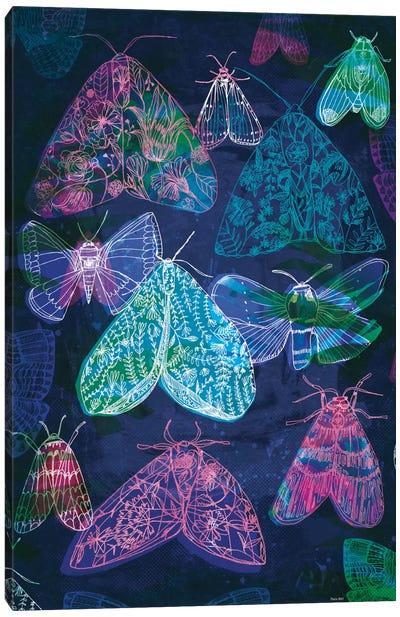 Floral Night Moths II Canvas Art Print