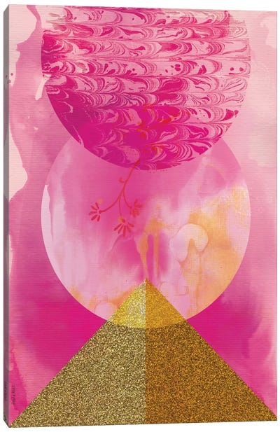 Golden Pink Canvas Art Print