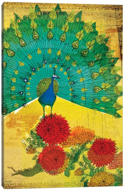 Peacock Canvas Print #PMI37