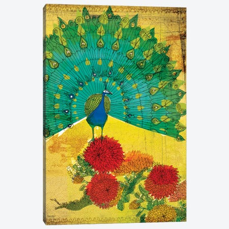 Peacock Canvas Print #PMI37} by Sweet William Canvas Art Print