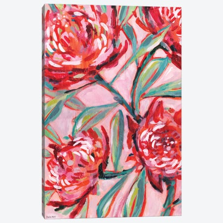 Waratah Painting Canvas Print #PMI44} by Sweet William Canvas Wall Art