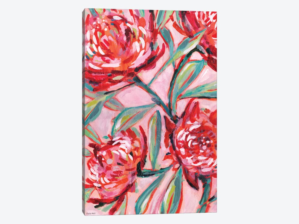 Waratah Painting by Sweet William 1-piece Canvas Print