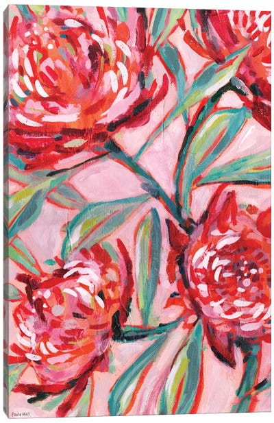 Waratah Painting Canvas Art Print