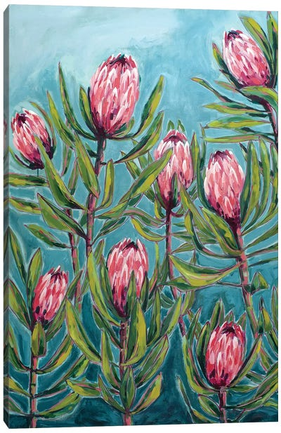 Pink Protea Painting Canvas Art Print