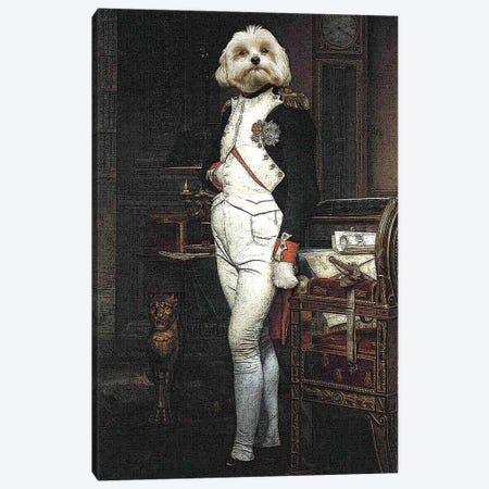 Napoleon Canvas Print #PMP83} by Pompous Pets Canvas Wall Art