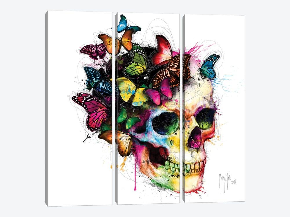 Les Couleurs De L'ame II by Patrice Murciano 3-piece Canvas Print