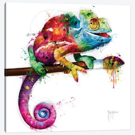 Pop Evolution Canvas Print #PMU117} by Patrice Murciano Canvas Print