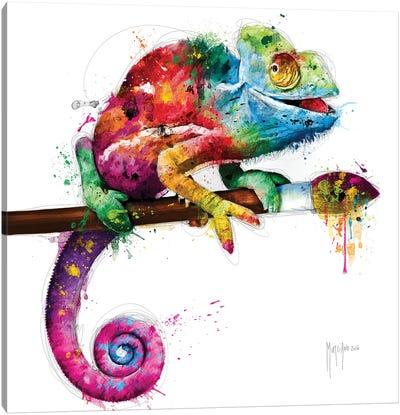 Pop Evolution Canvas Art Print