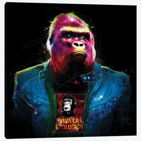Rock N' Kong Canvas Print #PMU124} by Patrice Murciano Canvas Wall Art
