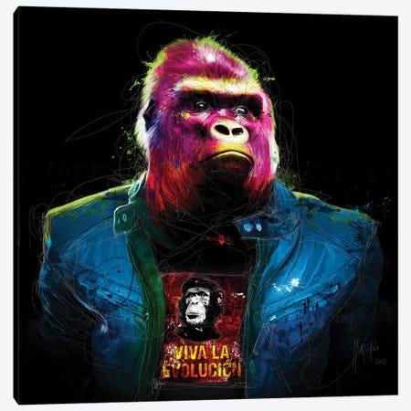 Rock N' Kong Canvas Print #PMU124} by Patrice Murciano Canvas Wall Art