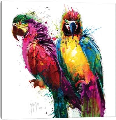 Tropical Colors Canvas Art Print
