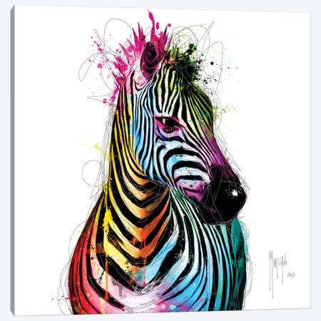 Zebra Pop Canvas Print #PMU137} by Patrice Murciano Canvas Print