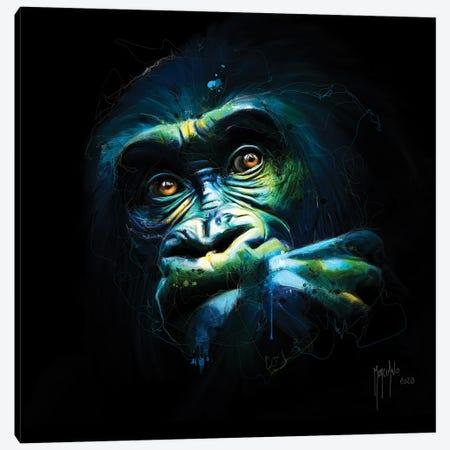 Black Kong Canvas Print #PMU154} by Patrice Murciano Canvas Print