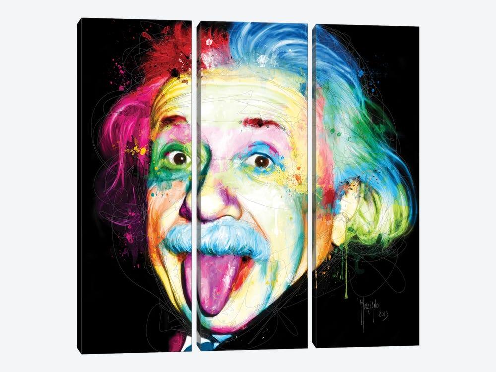 Albert Einstein by Patrice Murciano 3-piece Canvas Wall Art