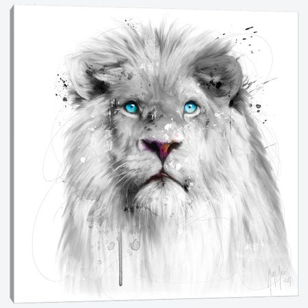 Lion White Canvas Print #PMU26} by Patrice Murciano Canvas Wall Art