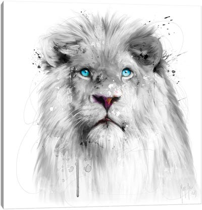Lion White Canvas Art Print