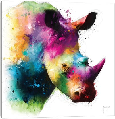 Rhinoceros Canvas Art Print