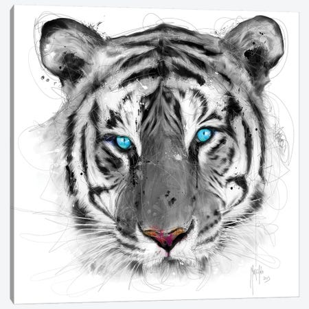 White Tiger Canvas Print #PMU45} by Patrice Murciano Canvas Art