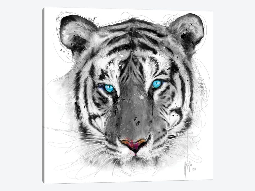 White Tiger by Patrice Murciano 1-piece Canvas Print