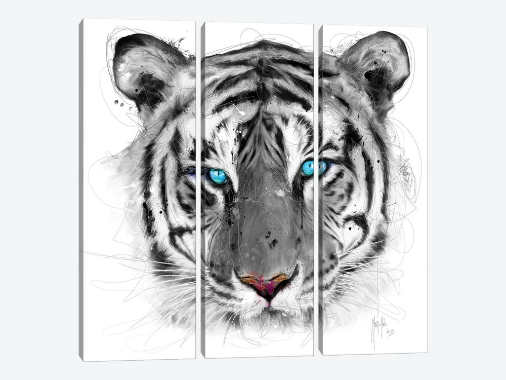 White Tiger by Patrice Murciano 3-piece Canvas Print