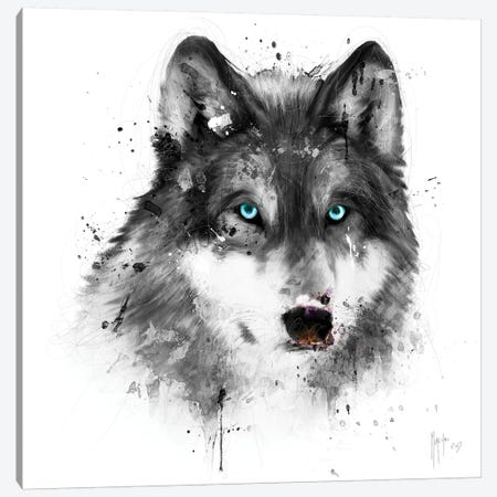 White Wolf Canvas Print #PMU46} by Patrice Murciano Canvas Artwork