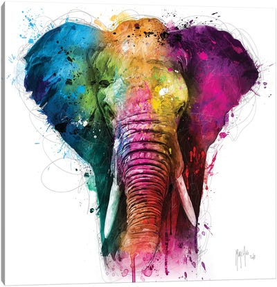 Africa Pop Canvas Art Print