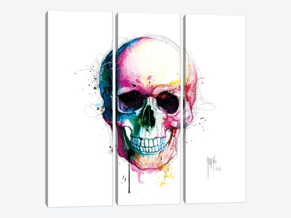 Angels Skull by Patrice Murciano 3-piece Canvas Artwork
