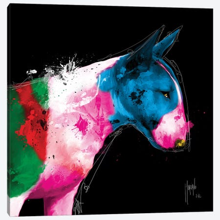 Bull Pop Canvas Print #PMU58} by Patrice Murciano Canvas Art