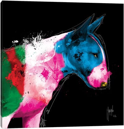 Bull Pop Canvas Art Print