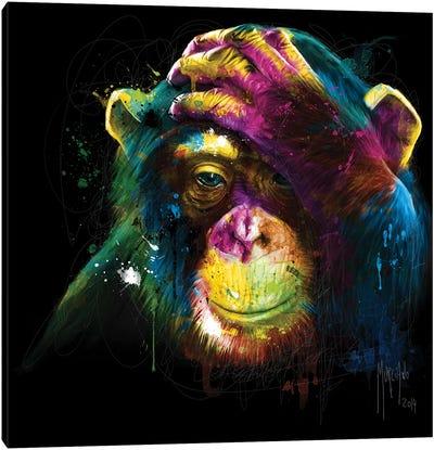 Darwin's Preoccupations Canvas Art Print