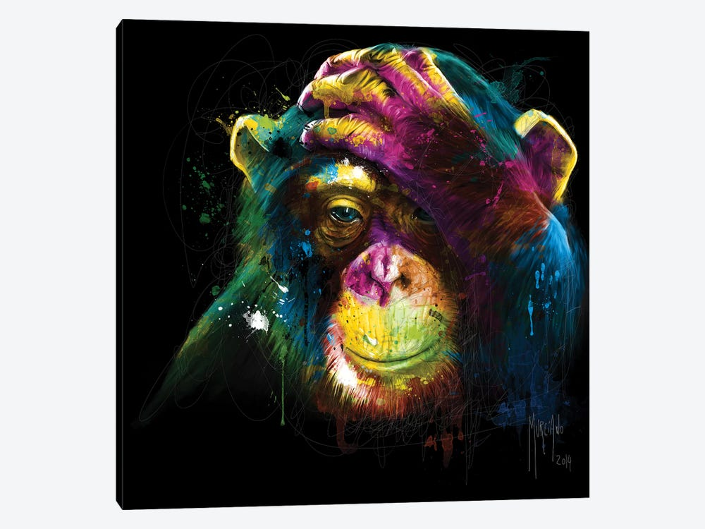 Darwin's Preoccupations by Patrice Murciano 1-piece Canvas Print
