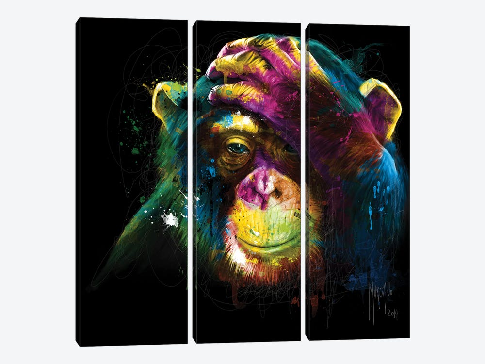 Darwin's Preoccupations by Patrice Murciano 3-piece Art Print