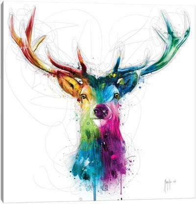 Free And Wild Canvas Art Print