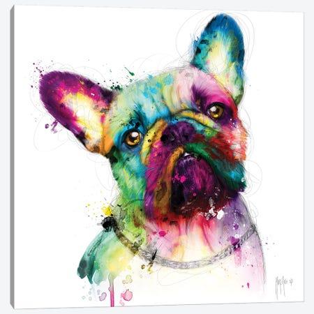 Bully Canvas Print #PMU9} by Patrice Murciano Canvas Print
