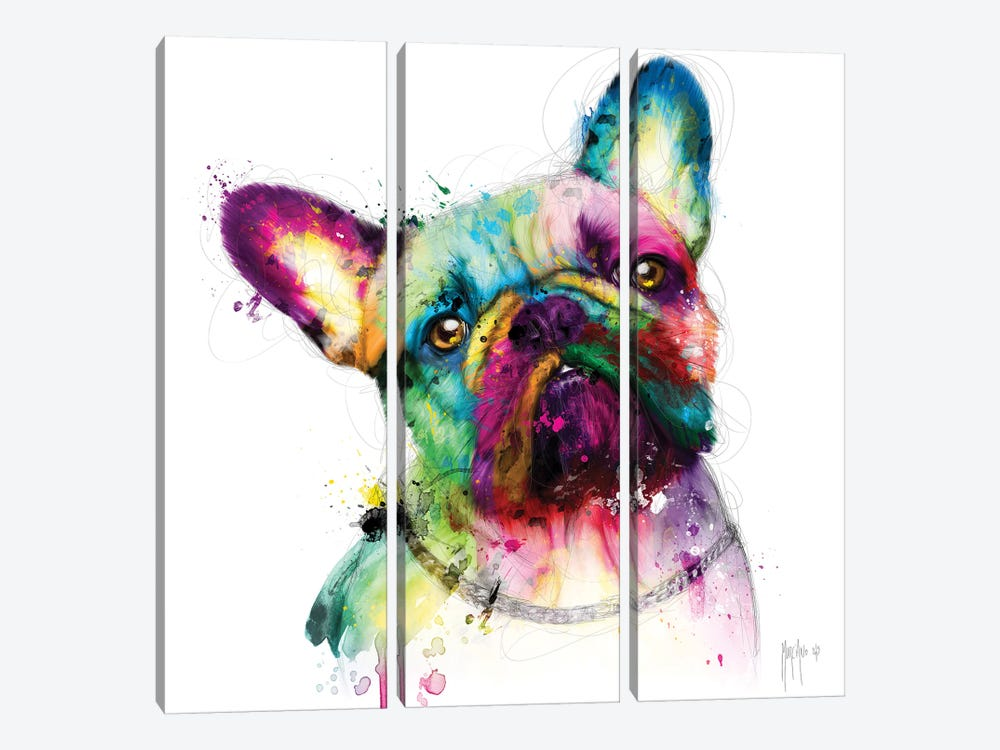 Bully by Patrice Murciano 3-piece Canvas Wall Art