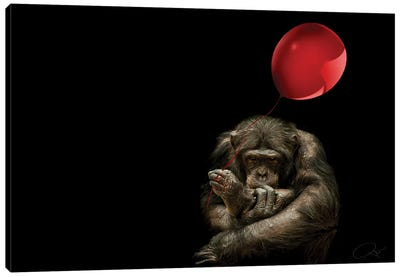 Girl With Red Balloon Canvas Art Print