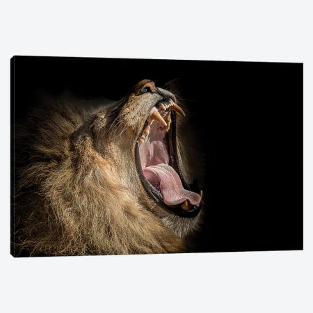 The War Cry Canvas Print #PNE58} by Paul Neville Canvas Artwork