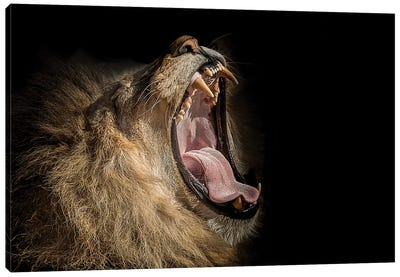 The War Cry Canvas Art Print