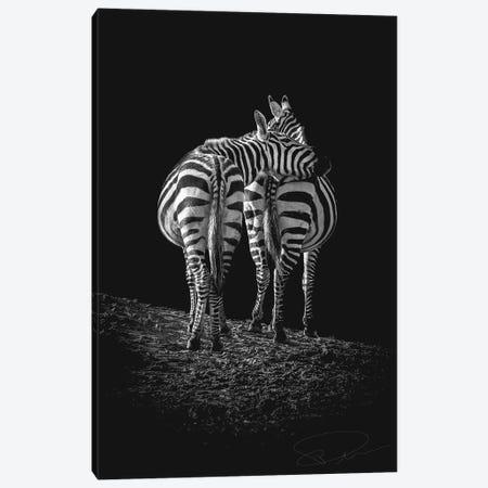 You Got A Friend In Me Canvas Print #PNE62} by Paul Neville Canvas Print