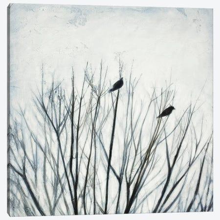 Branching Out II Canvas Print #PNO15} by Sienna Studio Canvas Art Print