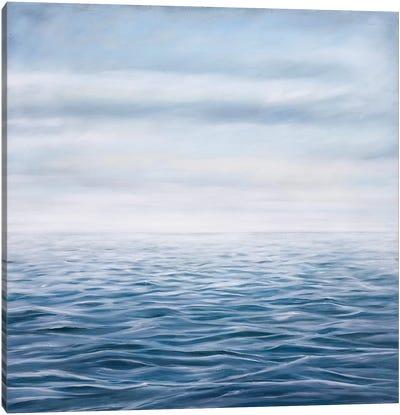 Clearing Skies Canvas Art Print